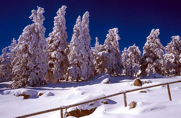 Winterimpressionen am Brocken im Harz